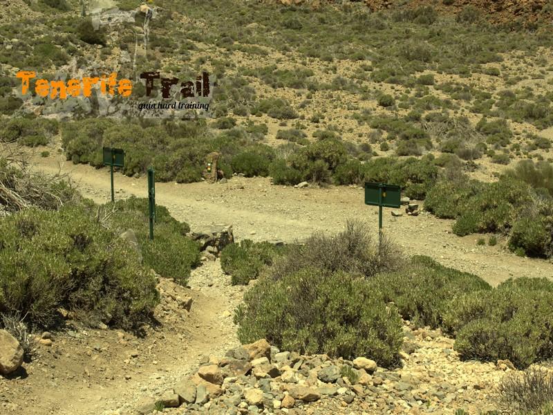 Bajada desde la Degollada de Guajara intersección con Siete Cañadas