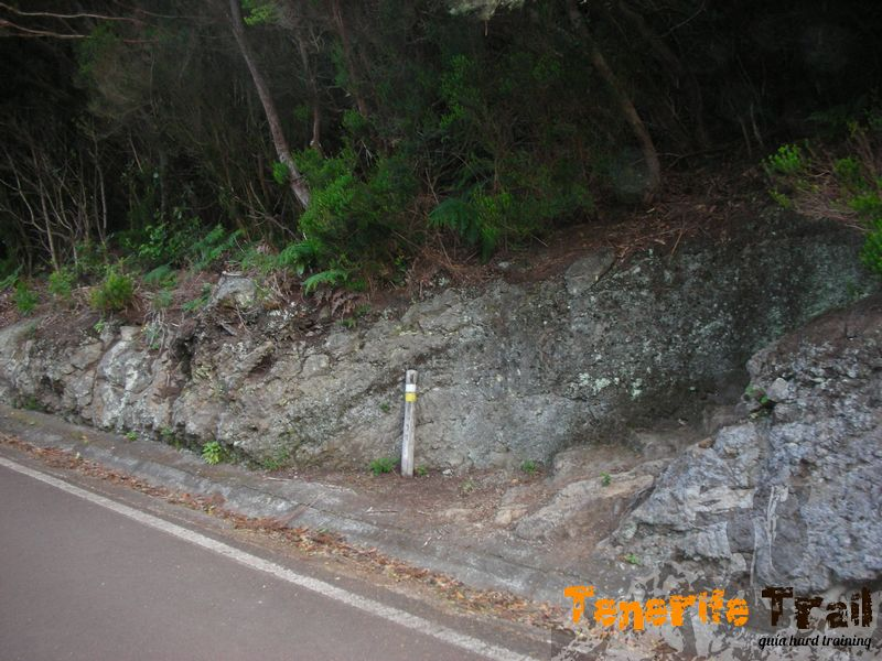 Acceso al sendero PR TF 2 de nuevo en Pico del Inglés
