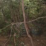 Piedra caraterística inicio sendero zona monte Aguirre