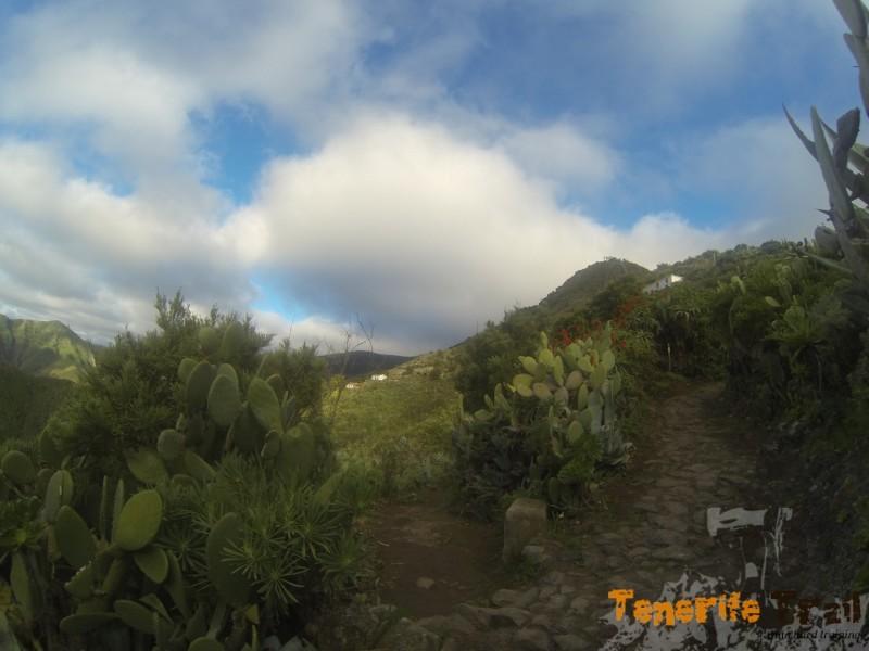 Intersección con el sendero PR 2 a la izquierda destino Pico del Inglés