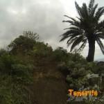 Detalle entrada sendero que te lleva a Taganana abandonando el PR 4