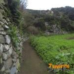 Vamos ya por camino en Roque Negro en breve a la izquierda para coger sendero de ascenso