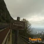 Ascenso a la carretera TF 342 y a la derecha por la pasarela