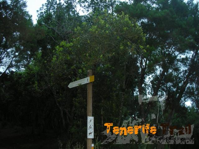 Detalle inicio sendero Camino de Los Guanches