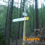 A Portillo del Topo (cruce con Camino Candelaria)