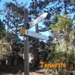 Detalle sendero Camino El Topo-Llanos de Chimiche