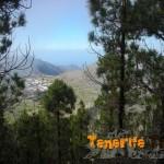 Detalle de Santiago del Teide al fondo