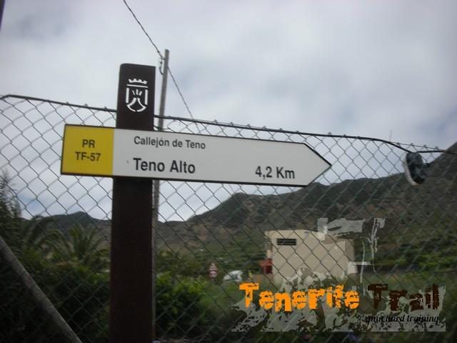 Sendero TF 57 a 4,2 km de -Teno