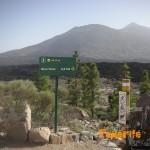 Detalle de sendero PR 70 en el Parque Nacional
