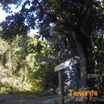 Alto del Asomadero detalle de senderos para circula