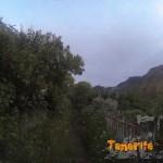 En el Valle de las Huertas detalle sendero