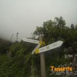 Cruce de senderos Benijo-El Draguillo