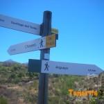 Instersección sendero local a Arguayo con PR 43