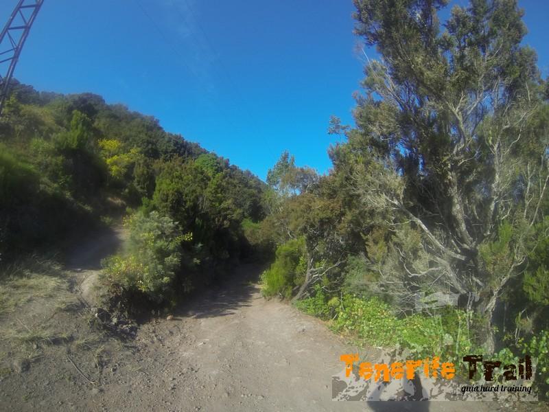 En La Cumbrecilla (pista hacía Roque Negro)