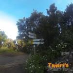 Casa Forestal tomamos la pista que ves