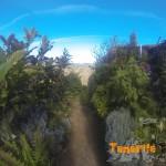 Salida sendero de nuevo a Afur