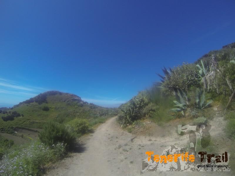 Detalle del sendero a 50 metros ya la bajada a Valle Luis