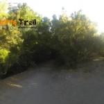 Cuatro caminos (zona de Pico del Inglés)
