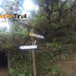 Desvio hacía sendero Valle Brosque (alto Casa Forestal)