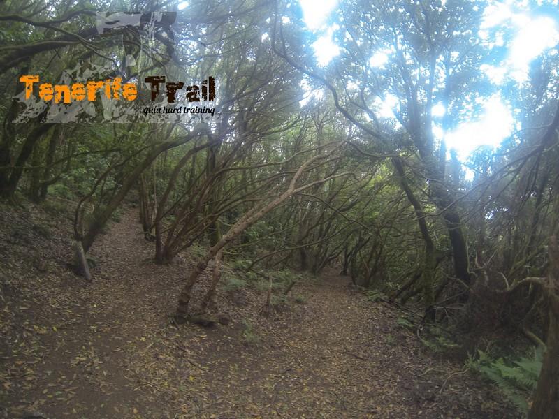 Desvio a tu izquierda se abandona el sendero de Valle Brosque