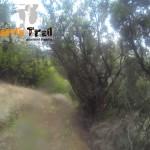 Detalle del sendero (inicio bajada hacía el barranco)