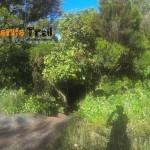 Inicio Monte Aguirre (carretera Pico del Inglés)