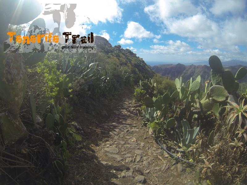 Bajada sendero Valle Luis